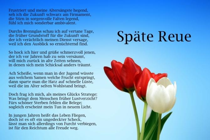 spaetereue